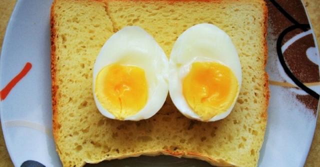 foto cane può mangiare uova