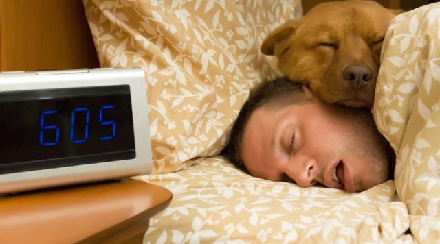 Foto Quanto deve dormire un Cane?