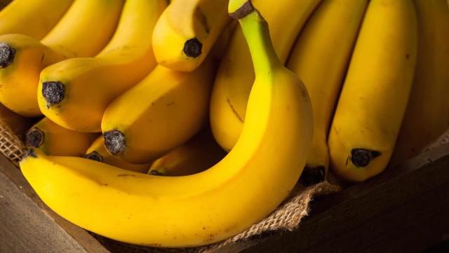 Foto Il Cane può mangiare banane?