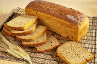 i gatti possono mangiare pane