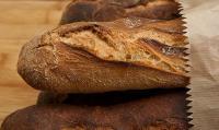 foto coniglio può mangiare pane