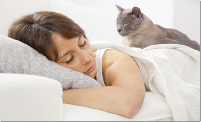 dormire con il gatto